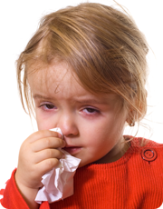 Colds & flu explained